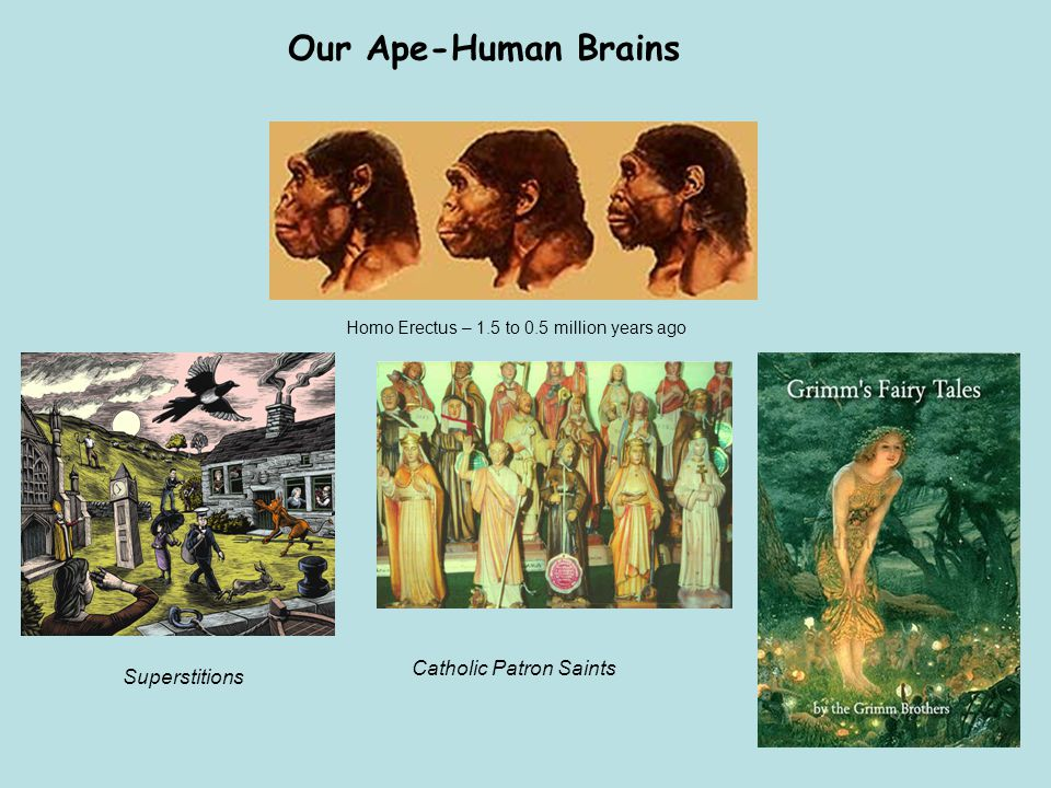 Our Ape-Human Brains Catholic Patron Saints Superstitions Homo Erectus – 1.5 to 0.5 million years ago