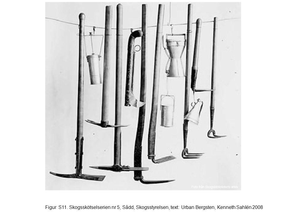 Figur S11. Skogsskötselserien nr 5, Sådd, Skogsstyrelsen, text: Urban Bergsten, Kenneth Sahlén 2008