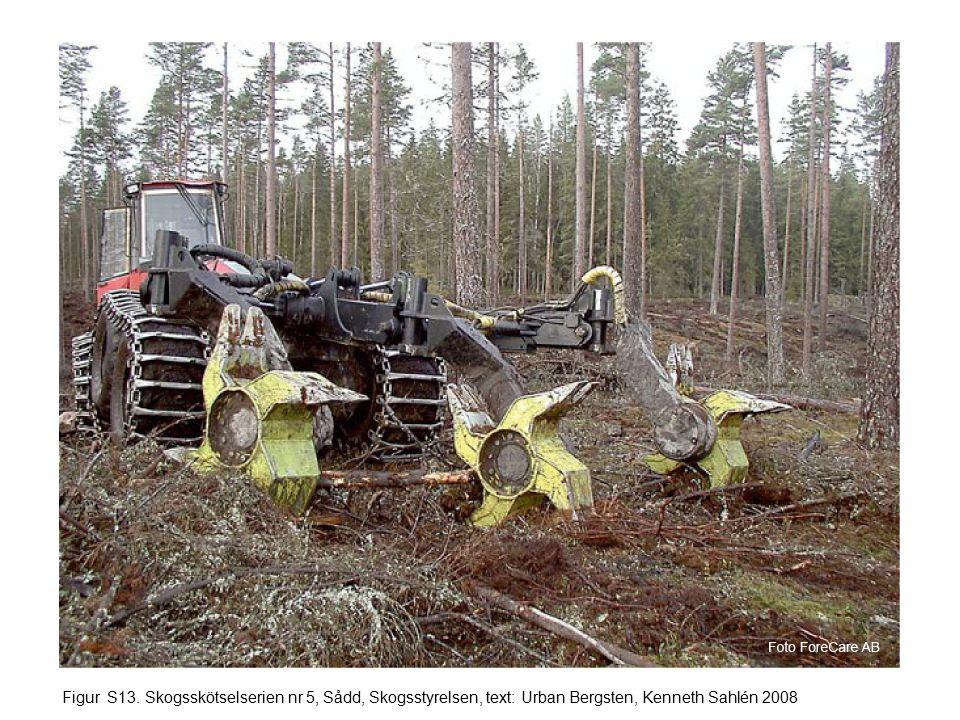 Figur S13. Skogsskötselserien nr 5, Sådd, Skogsstyrelsen, text: Urban Bergsten, Kenneth Sahlén 2008