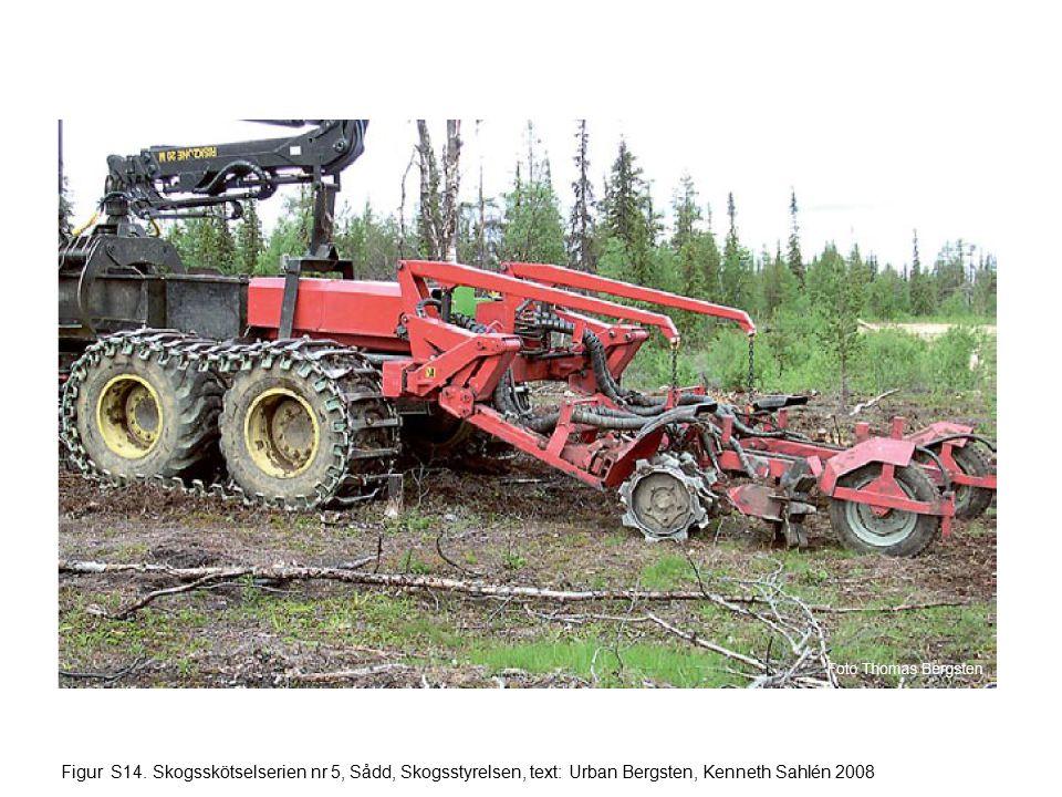 Figur S14. Skogsskötselserien nr 5, Sådd, Skogsstyrelsen, text: Urban Bergsten, Kenneth Sahlén 2008