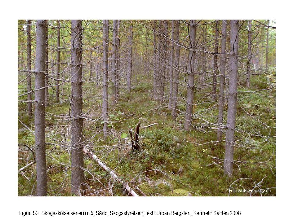 Figur S3. Skogsskötselserien nr 5, Sådd, Skogsstyrelsen, text: Urban Bergsten, Kenneth Sahlén 2008