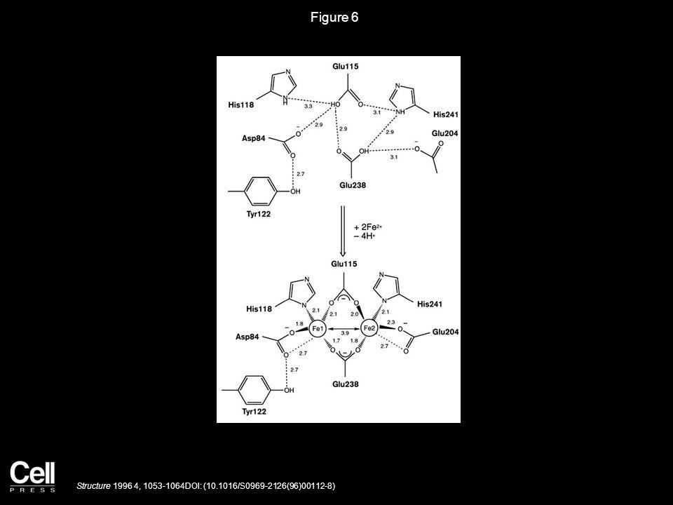 Figure 6 Structure 1996 4, 1053-1064DOI: (10.1016/S0969-2126(96)00112-8)