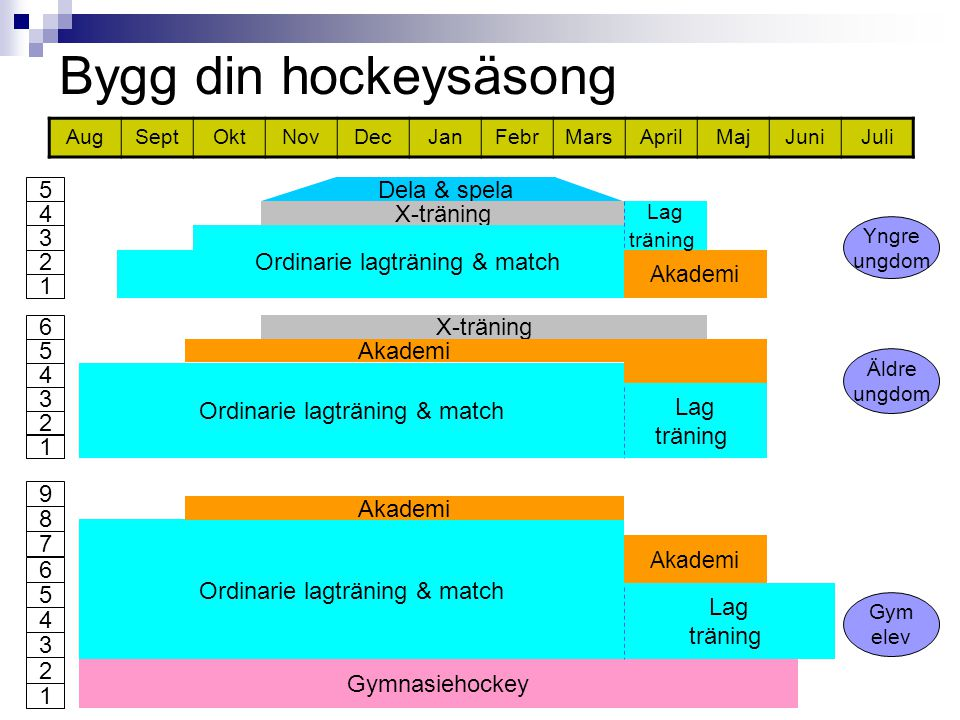 Bygg din hockeysäsong AugSeptOktNovDecJanFebrMarsAprilMajJuniJuli X-träning Ordinarie lagträning & match Lag träning Akademi Äldre ungdom 1 2 3 4 5 6 Dela & spela X-träning Ordinarie lagträning & match Akademi Lag träning Yngre ungdom 1 2 3 4 5 Ordinarie lagträning & match Gymnasiehockey Lag träning Gym elev 1 2 3 4 5 6 8 Akademi 7 9