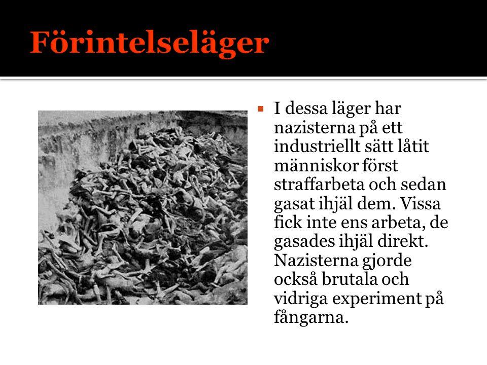  I dessa läger har nazisterna på ett industriellt sätt låtit människor först straffarbeta och sedan gasat ihjäl dem.
