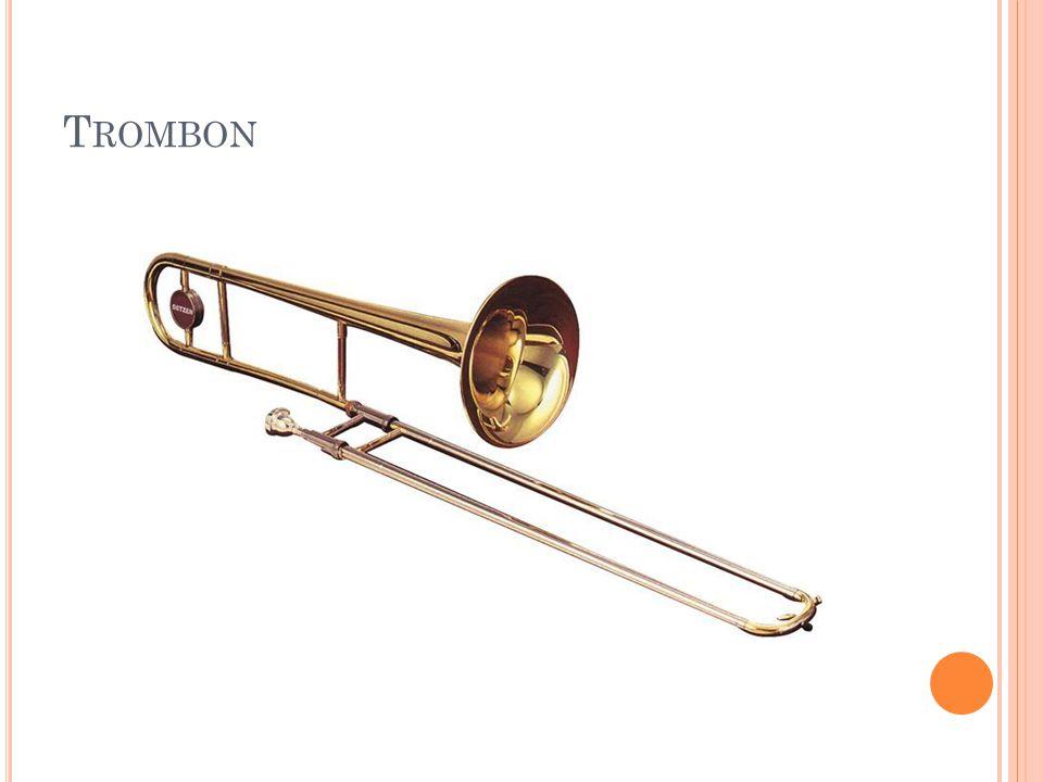 T ROMBON