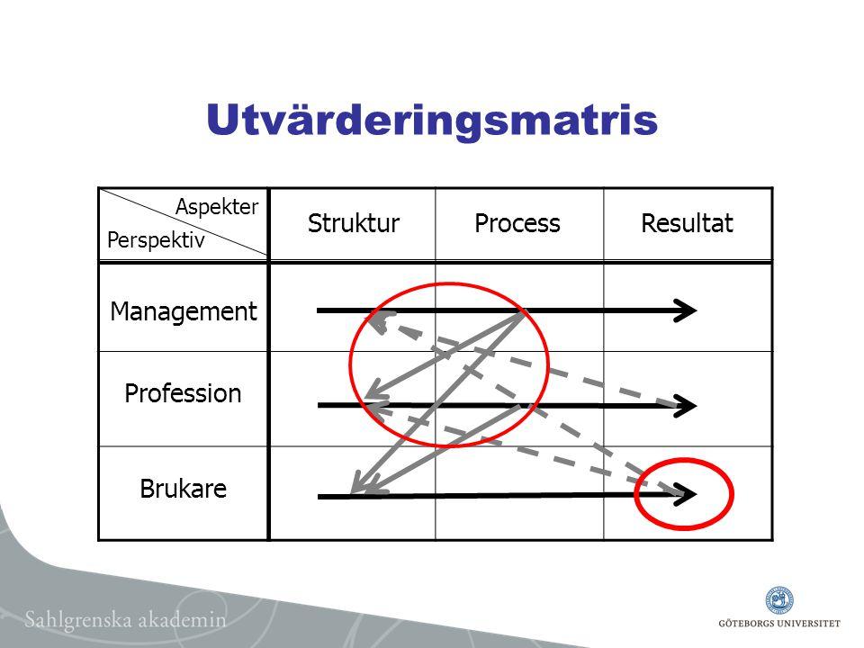 Utvärderingsmatris StrukturProcessResultat Aspekter Perspektiv Management Profession Brukare