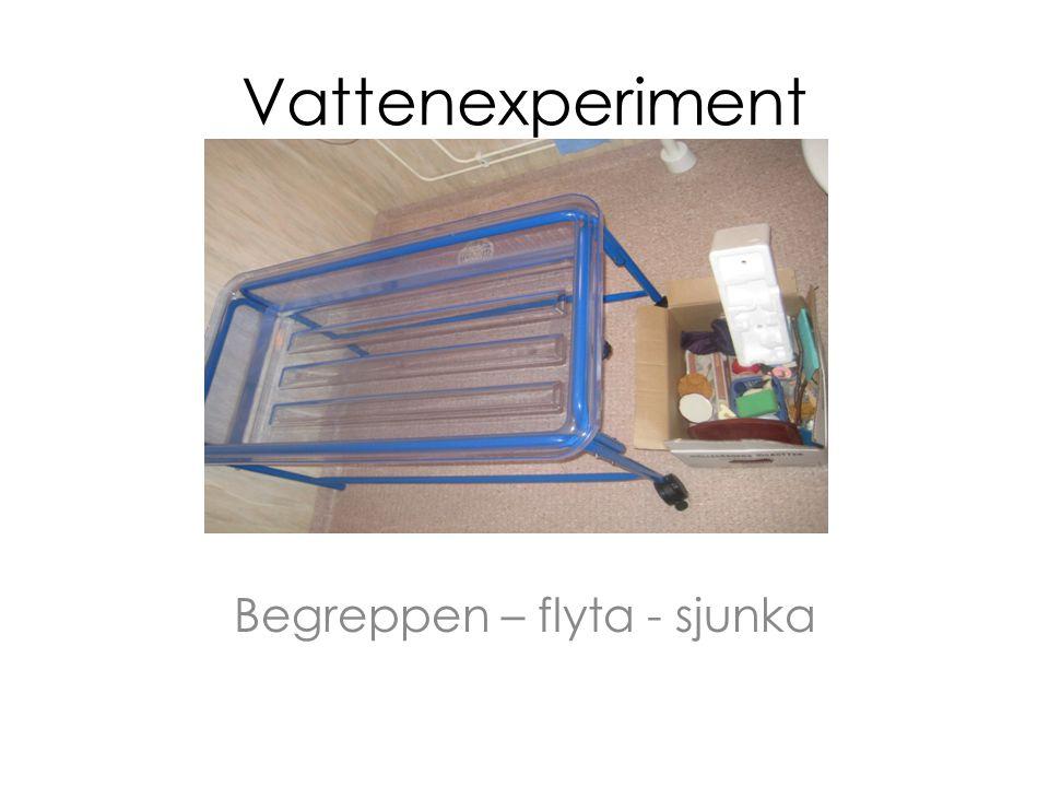 Vattenexperiment Begreppen – flyta - sjunka