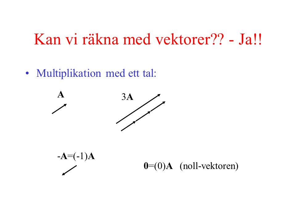 Kan vi räkna med vektorer?.- Ja!.