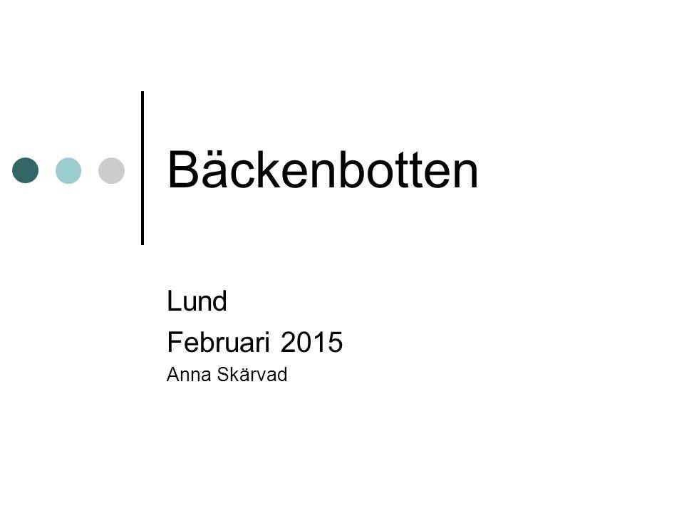 Bäckenbotten Lund Februari 2015 Anna Skärvad