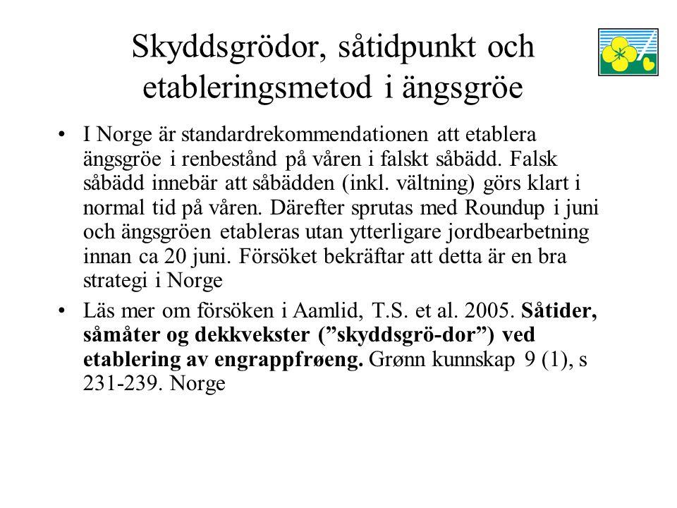Skyddsgrödor, såtidpunkt och etableringsmetod i ängsgröe I Norge är standardrekommendationen att etablera ängsgröe i renbestånd på våren i falskt såbädd.
