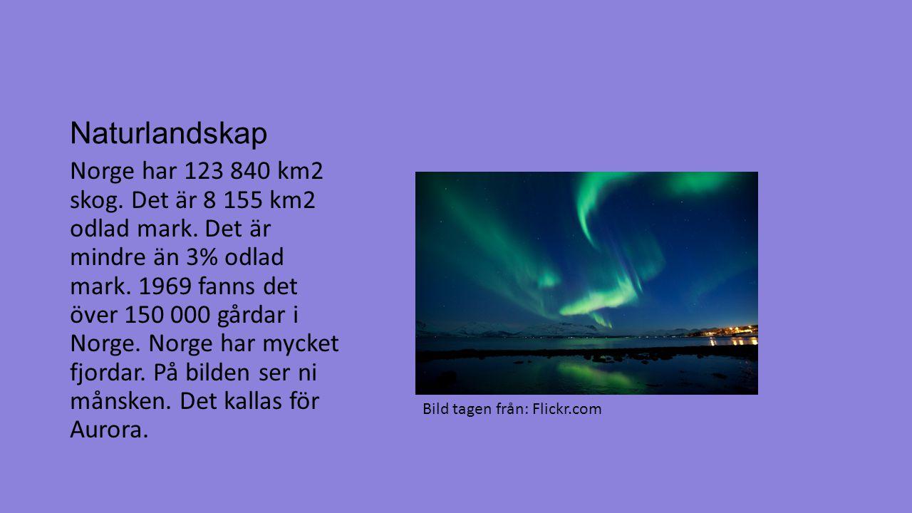 Naturlandskap Norge har 123 840 km2 skog. Det är 8 155 km2 odlad mark. Det är mindre än 3% odlad mark. 1969 fanns det över 150 000 gårdar i Norge. Nor