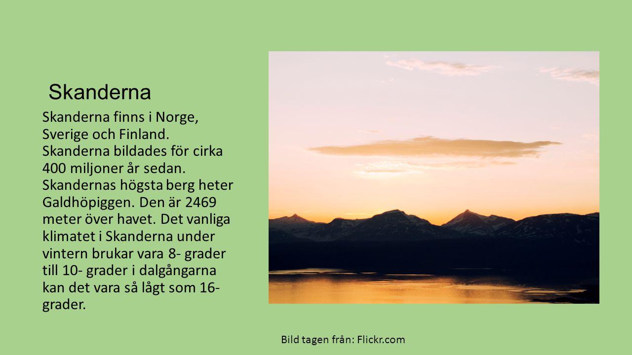 Skanderna Skanderna finns i Norge, Sverige och Finland. Skanderna bildades för cirka 400 miljoner år sedan. Skandernas högsta berg heter Galdhöpiggen.