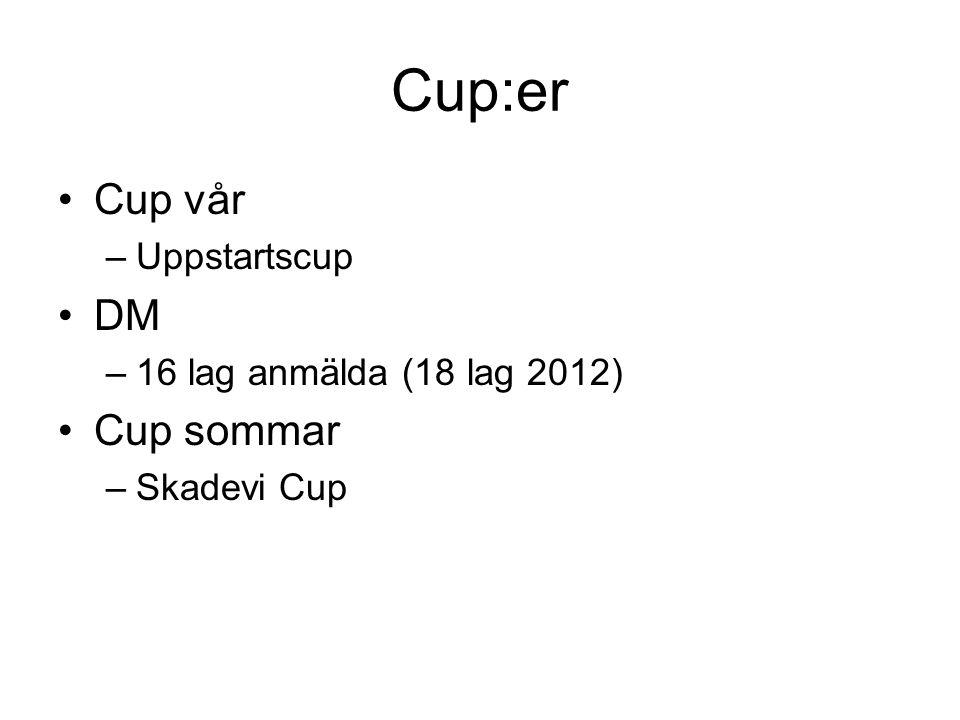 Cup:er Cup vår –Uppstartscup DM –16 lag anmälda (18 lag 2012) Cup sommar –Skadevi Cup