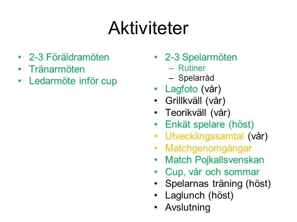 Aktiviteter 2-3 Föräldramöten Tränarmöten Ledarmöte inför cup 2-3 Spelarmöten –Rutiner –Spelarråd Lagfoto (vår) Grillkväll (vår) Teorikväll (vår) Enkät spelare (höst) Utvecklingssamtal (vår) Matchgenomgångar Match Pojkallsvenskan Cup, vår och sommar Spelarnas träning (höst) Laglunch (höst) Avslutning