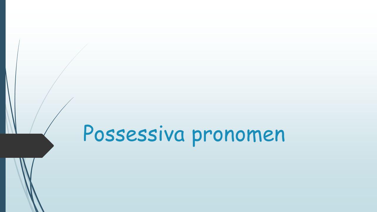  Possessiva pronomen står för ägande (se engelskans possess)  Det finns tre bestämda artiklar i tyskan:  Der  Das  Die  Dessa bestämda artiklar måste man lära sig för de styr allt!