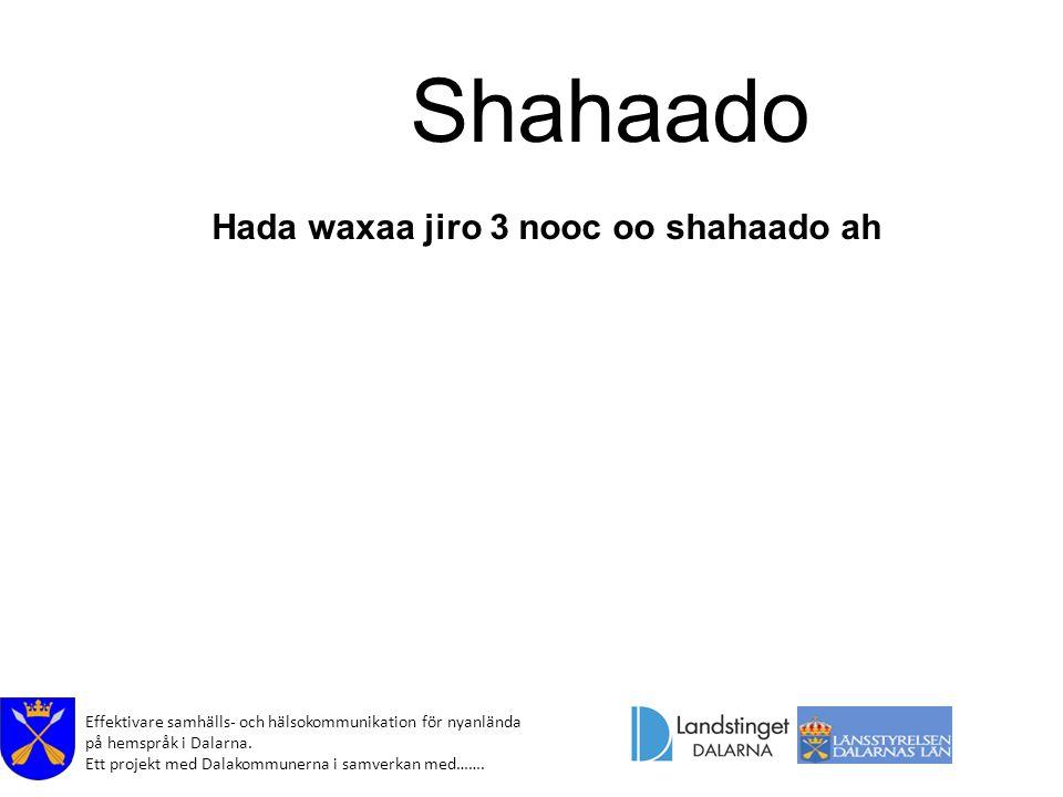 Effektivare samhälls- och hälsokommunikation för nyanlända på hemspråk i Dalarna. Ett projekt med Dalakommunerna i samverkan med……. Shahaado Hada waxa