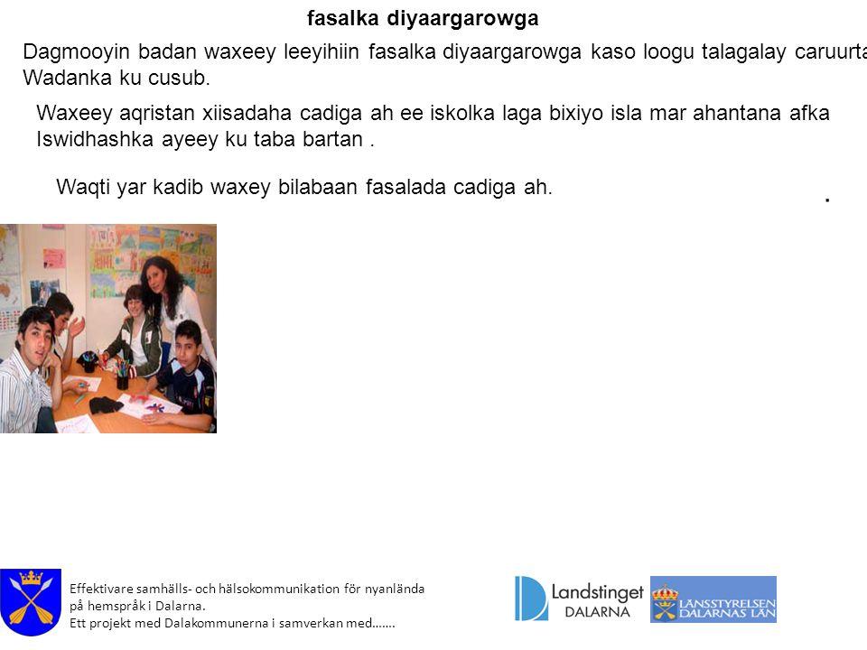 Effektivare samhälls- och hälsokommunikation för nyanlända på hemspråk i Dalarna. Ett projekt med Dalakommunerna i samverkan med…….. fasalka diyaargar