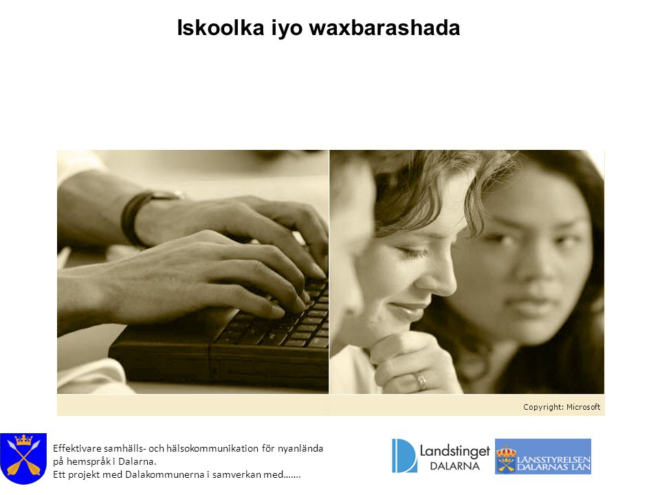 Effektivare samhälls- och hälsokommunikation för nyanlända på hemspråk i Dalarna. Ett projekt med Dalakommunerna i samverkan med……. Copyright: Microso