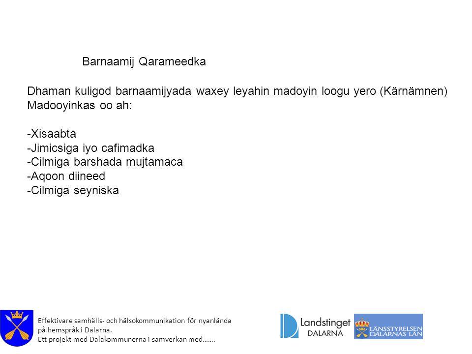 Effektivare samhälls- och hälsokommunikation för nyanlända på hemspråk i Dalarna. Ett projekt med Dalakommunerna i samverkan med……. Barnaamij Qarameed