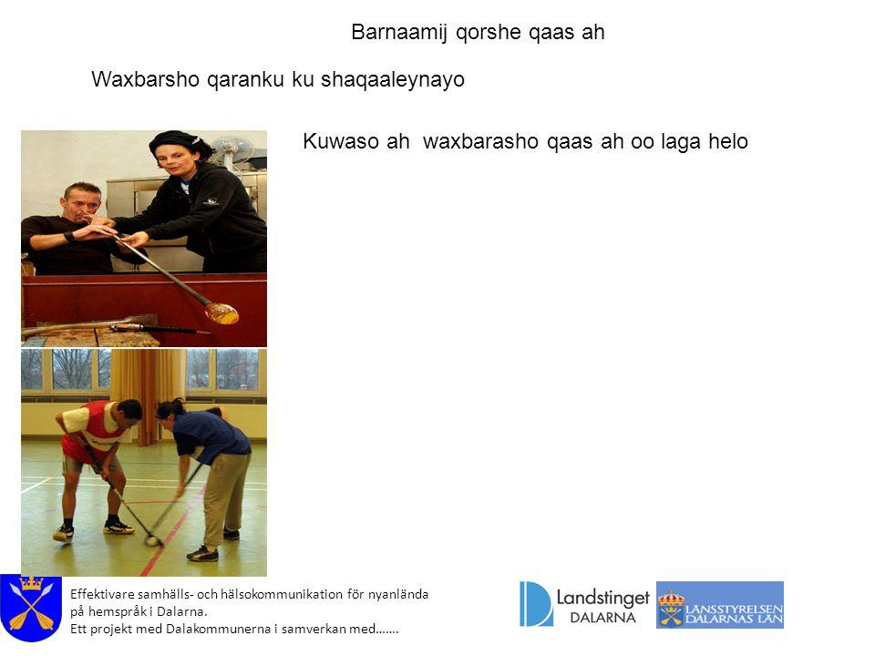 Effektivare samhälls- och hälsokommunikation för nyanlända på hemspråk i Dalarna. Ett projekt med Dalakommunerna i samverkan med……. Barnaamij qorshe q