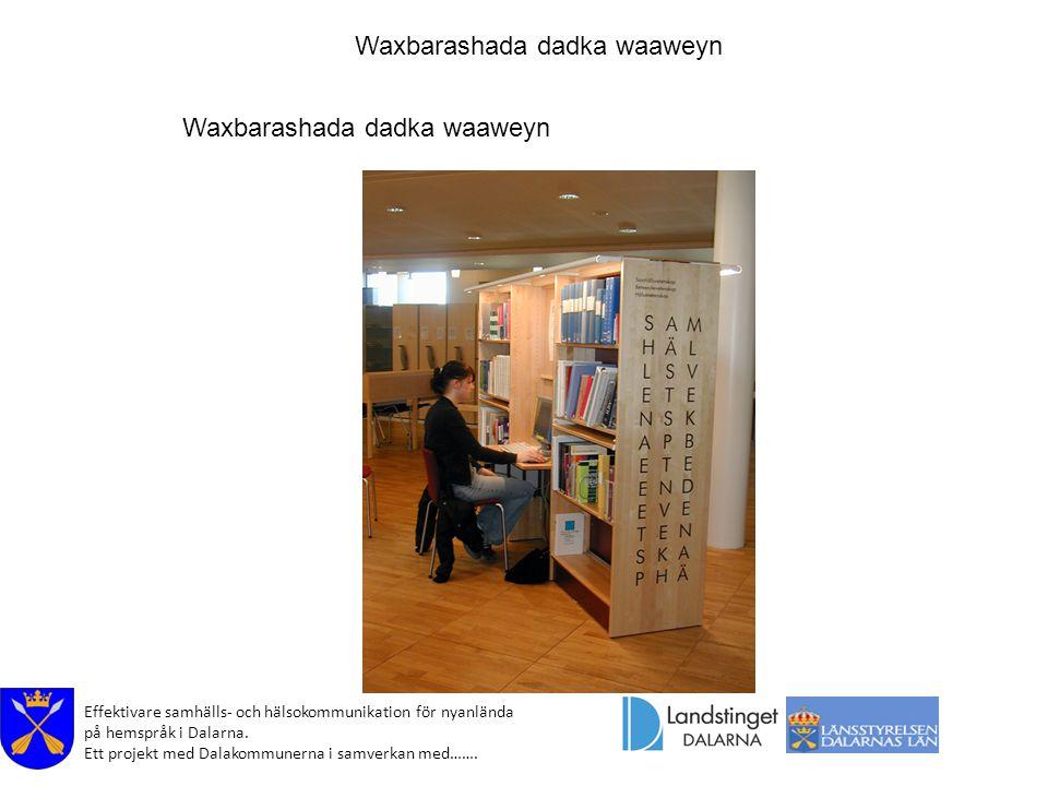 Effektivare samhälls- och hälsokommunikation för nyanlända på hemspråk i Dalarna. Ett projekt med Dalakommunerna i samverkan med……. Waxbarashada dadka