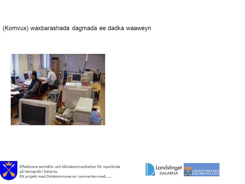 Effektivare samhälls- och hälsokommunikation för nyanlända på hemspråk i Dalarna. Ett projekt med Dalakommunerna i samverkan med……. (Komvux) waxbarash