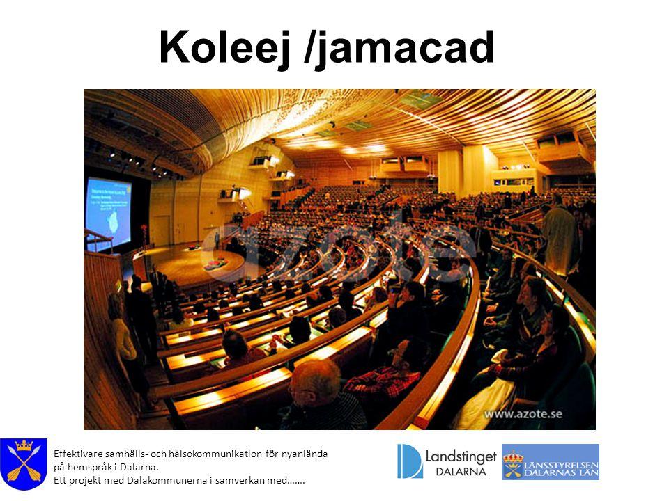 Effektivare samhälls- och hälsokommunikation för nyanlända på hemspråk i Dalarna. Ett projekt med Dalakommunerna i samverkan med……. Koleej /jamacad