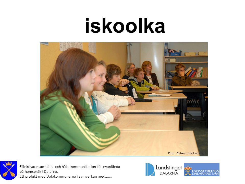 Effektivare samhälls- och hälsokommunikation för nyanlända på hemspråk i Dalarna. Ett projekt med Dalakommunerna i samverkan med……. iskoolka Foto: Öst