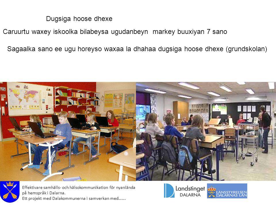 Effektivare samhälls- och hälsokommunikation för nyanlända på hemspråk i Dalarna. Ett projekt med Dalakommunerna i samverkan med……. Dugsiga hoose dhex