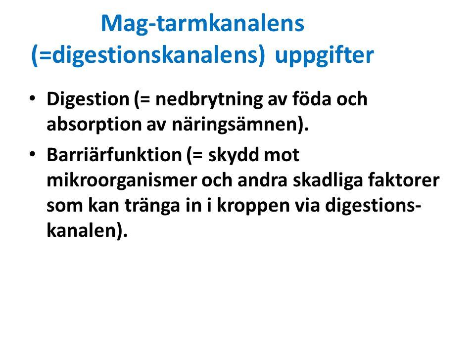 Mag-tarmkanalens (=digestionskanalens) uppgifter Digestion (= nedbrytning av föda och absorption av näringsämnen). Barriärfunktion (= skydd mot mikroo