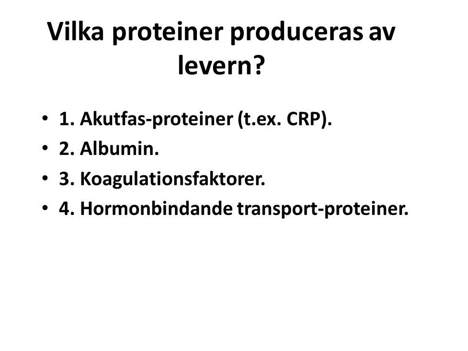 Vilka proteiner produceras av levern? 1. Akutfas-proteiner (t.ex. CRP). 2. Albumin. 3. Koagulationsfaktorer. 4. Hormonbindande transport-proteiner.