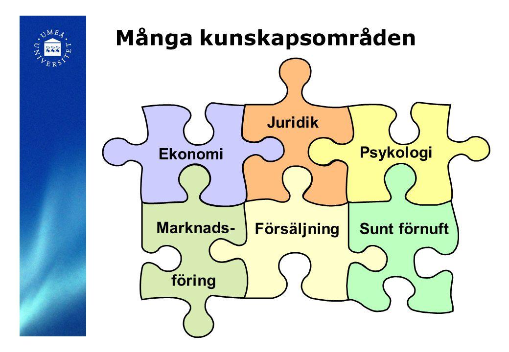 Många kunskapsområden Ekonomi Juridik Psykologi Marknads- föring Sunt förnuftFörsäljning