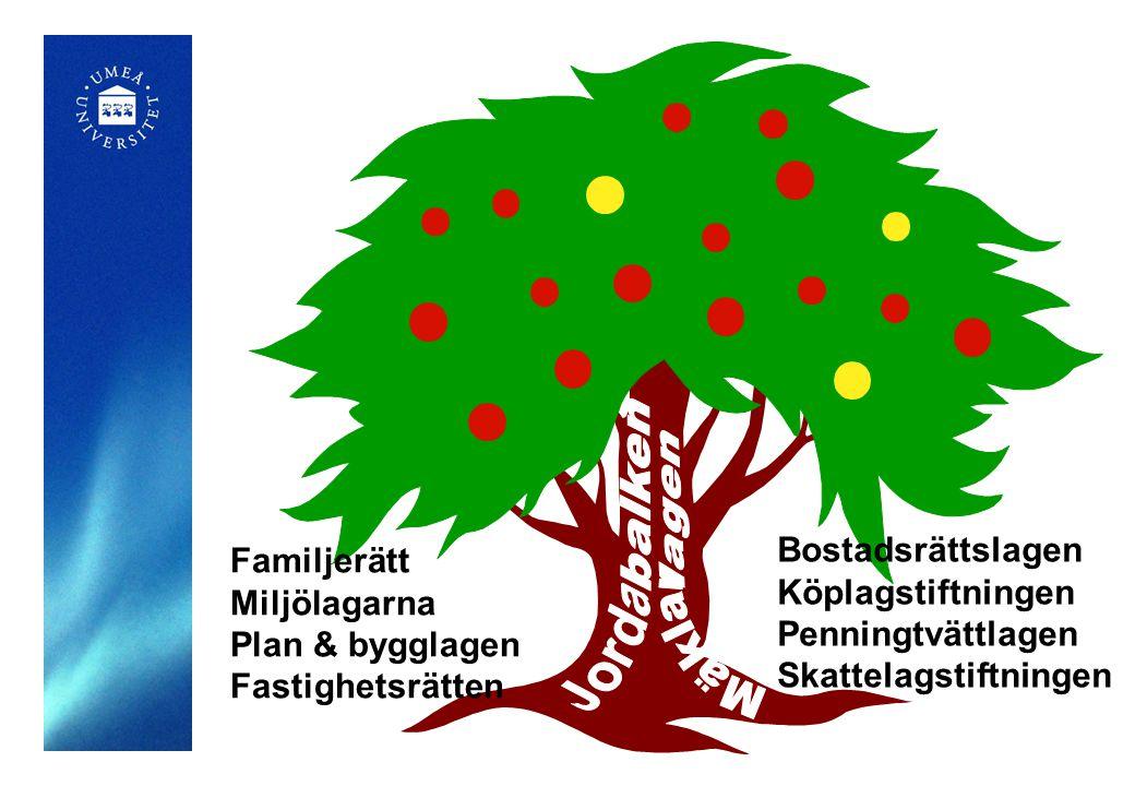 Bostadsrättslagen Köplagstiftningen Penningtvättlagen Skattelagstiftningen Familjerätt Miljölagarna Plan & bygglagen Fastighetsrätten