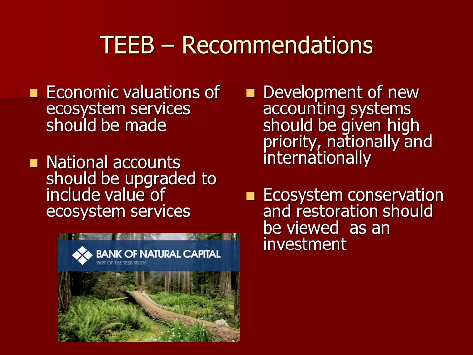 TEEB – Recommendations Economic valuations of ecosystem services should be made Economic valuations of ecosystem services should be made National accounts should be upgraded to include value of ecosystem services National accounts should be upgraded to include value of ecosystem services Development of new accounting systems should be given high priority, nationally and internationally Development of new accounting systems should be given high priority, nationally and internationally Ecosystem conservation and restoration should be viewed as an investment Ecosystem conservation and restoration should be viewed as an investment