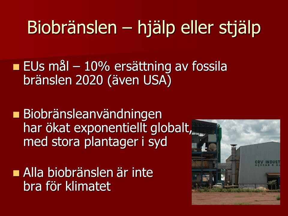 Biobränslen – hjälp eller stjälp EUs mål – 10% ersättning av fossila bränslen 2020 (även USA) EUs mål – 10% ersättning av fossila bränslen 2020 (även USA) Biobränsleanvändningen har ökat exponentiellt globalt, med stora plantager i syd Biobränsleanvändningen har ökat exponentiellt globalt, med stora plantager i syd Alla biobränslen är inte bra för klimatet Alla biobränslen är inte bra för klimatet