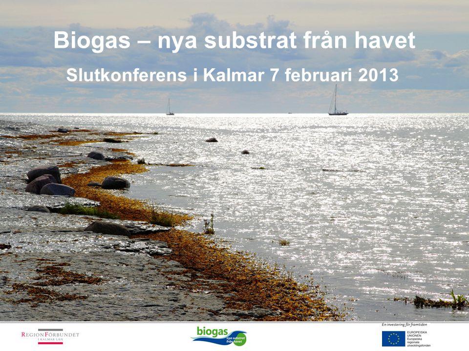 Biogas – nya substrat från havet Slutkonferens i Kalmar 7 februari 2013