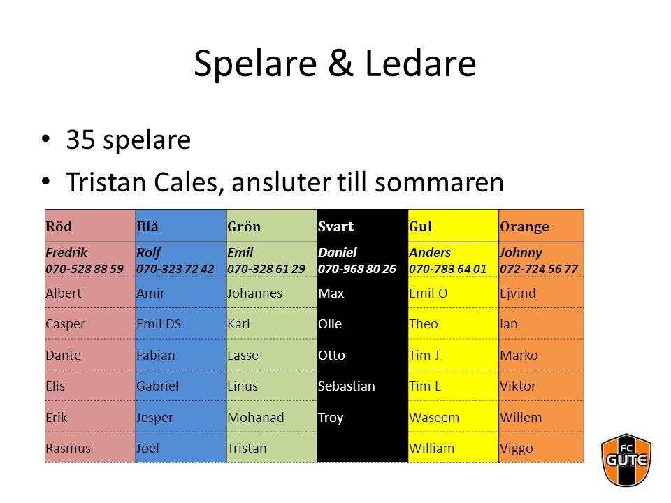 Spelare & Ledare 35 spelare Tristan Cales, ansluter till sommaren RödBlåGrönSvartGulOrange Fredrik 070-528 88 59 Rolf 070-323 72 42 Emil 070-328 61 29