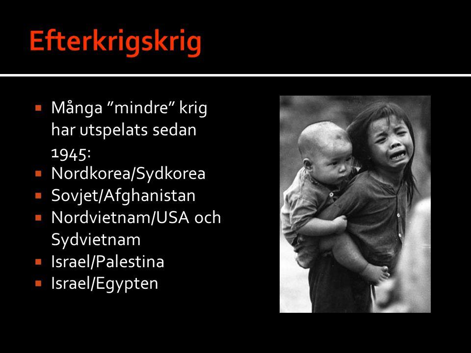  Många mindre krig har utspelats sedan 1945:  Nordkorea/Sydkorea  Sovjet/Afghanistan  Nordvietnam/USA och Sydvietnam  Israel/Palestina  Israel/Egypten