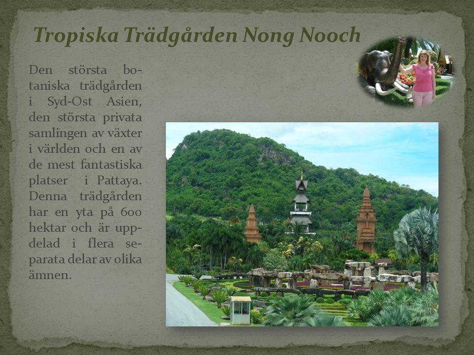 Tropiska Trädgården Nong Nooch Den största bo- taniska trädgården i Syd-Ost Asien, den största privata samlingen av växter i världen och en av de mest fantastiska platser i Pattaya.