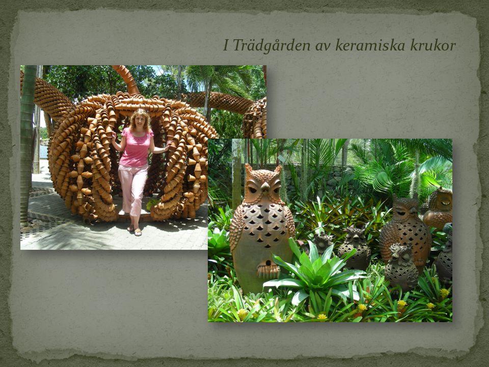 I Trädgården av keramiska krukor