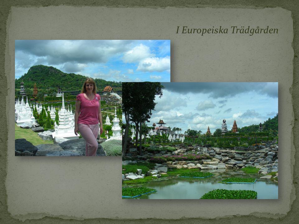 I Europeiska Trädgården