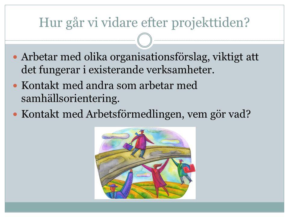 Hur går vi vidare efter projekttiden? Arbetar med olika organisationsförslag, viktigt att det fungerar i existerande verksamheter. Kontakt med andra s