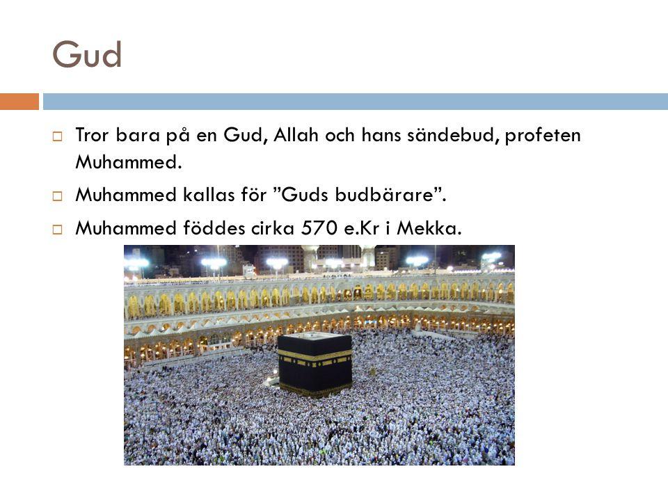 """Gud  Tror bara på en Gud, Allah och hans sändebud, profeten Muhammed.  Muhammed kallas för """"Guds budbärare"""".  Muhammed föddes cirka 570 e.Kr i Mekk"""