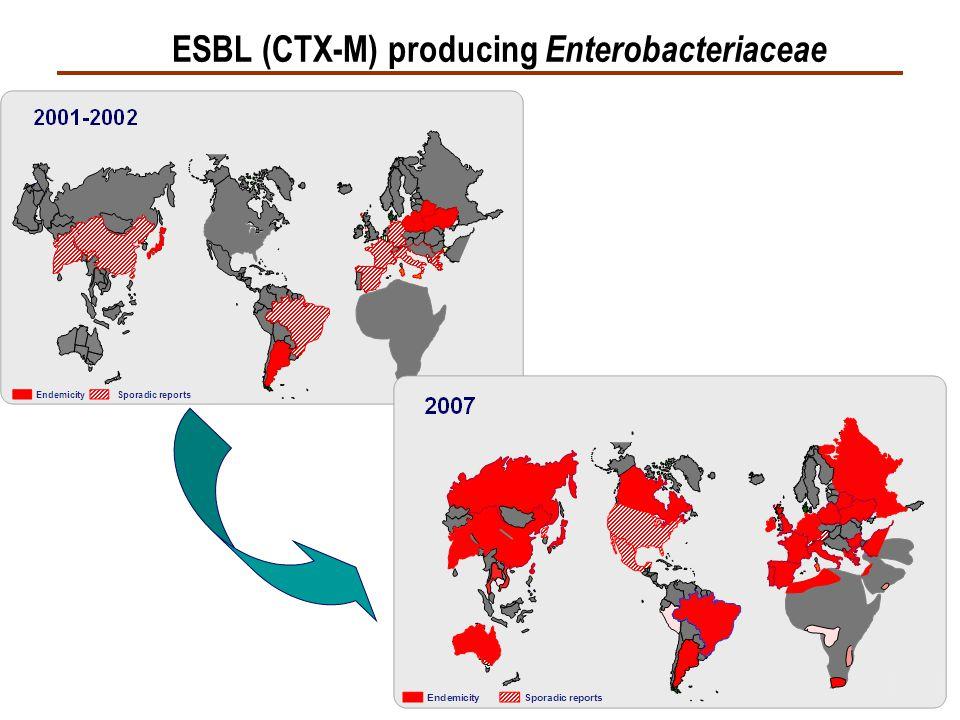 ESBL (CTX-M) producing Enterobacteriaceae