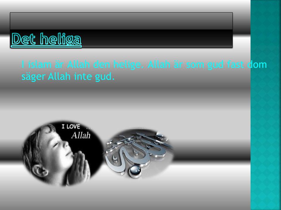 I islam är Allah den helige. Allah är som gud fast dom säger Allah inte gud.