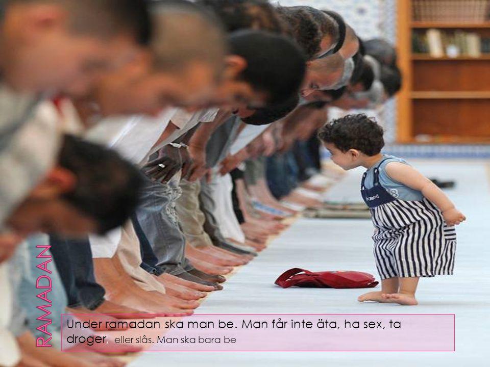 Under ramadan ska man be. Man får inte äta, ha sex, ta droger, eller slås. Man ska bara be