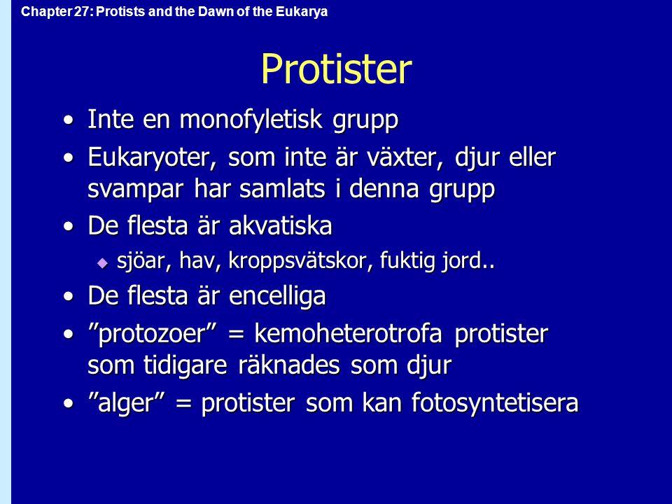 Chapter 27: Protists and the Dawn of the Eukarya Protister en del protister är rörliga, andra orörligaen del protister är rörliga, andra orörliga  amöboida rörelser med pseudopoder  cilier eller flageller  flagellat: beskrivande term för encellig protist med flagell(er) protister har rikligt med vesiklerprotister har rikligt med vesikler  ökar effektiv ytareal  näringsintag (endocytos; fagocytos)  vattenintag (pinocytos; i saltvatten)  kontraktila vakuoler pumpar ut vatten ur cellen i sötvattensmiljö
