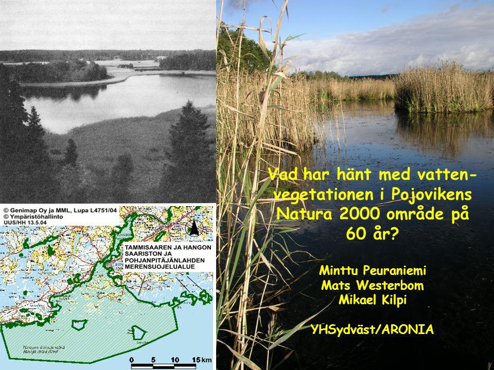 Vad har hänt med vatten- vegetationen i Pojovikens Natura 2000 område på 60 år? Minttu Peuraniemi Mats Westerbom Mikael Kilpi YHSydväst/ARONIA
