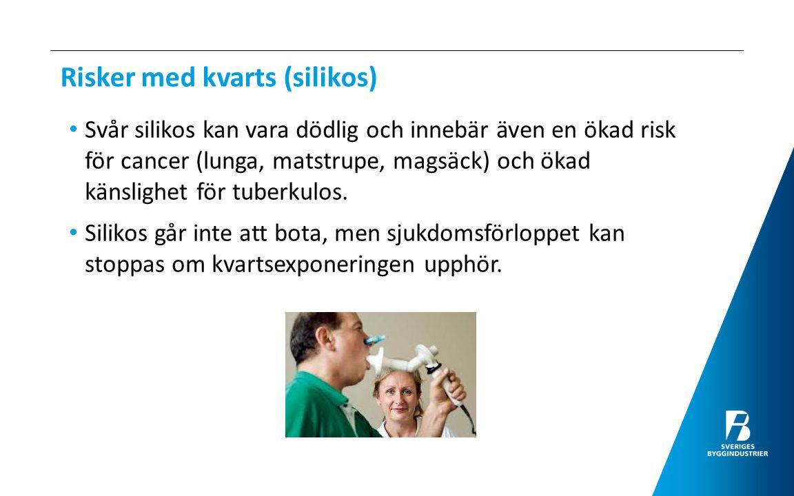 Dödlighet i silikos i Sverige