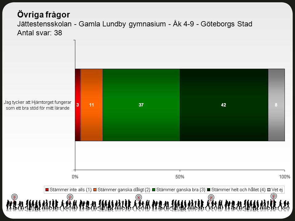 Övriga frågor Jättestensskolan - Gamla Lundby gymnasium - Åk 4-9 - Göteborgs Stad Antal svar: 38